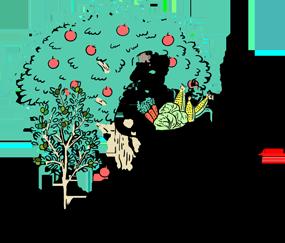 観野菜(MIYASAI)